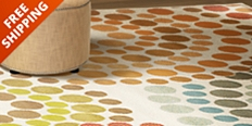 Save up to 55% with free shipping on traditional and contemporary area rugs in our home decor sale.
