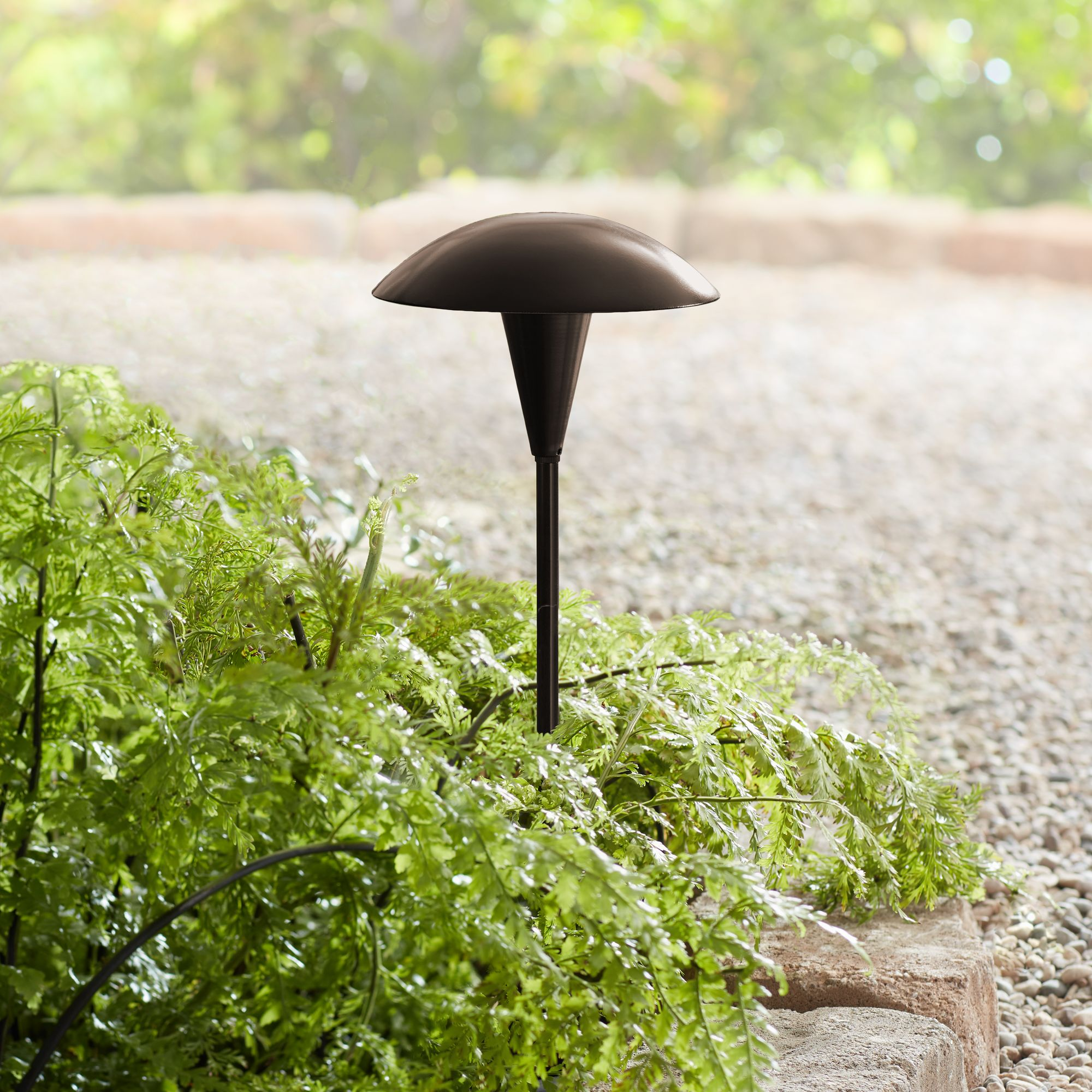 Amazing Large Mushroom Low Voltage Bronze LED Landscape Path Light