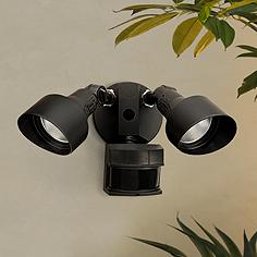 Traditional Motion Sensor Outdoor Lighting Lamps Plus