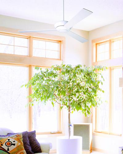 modern ceiling fan, white ceiling fan, throw pillows, sunroom