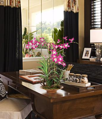 Tropical Style Home Office Photo