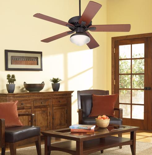 ceiling fan blades, wood tones, living room