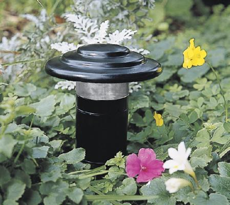 Landscape Lighting in a Flower Bed Photo