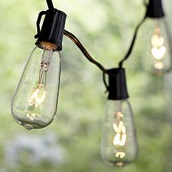 11-Light Ella Clear Edison Vintage Outdoor String Light Set