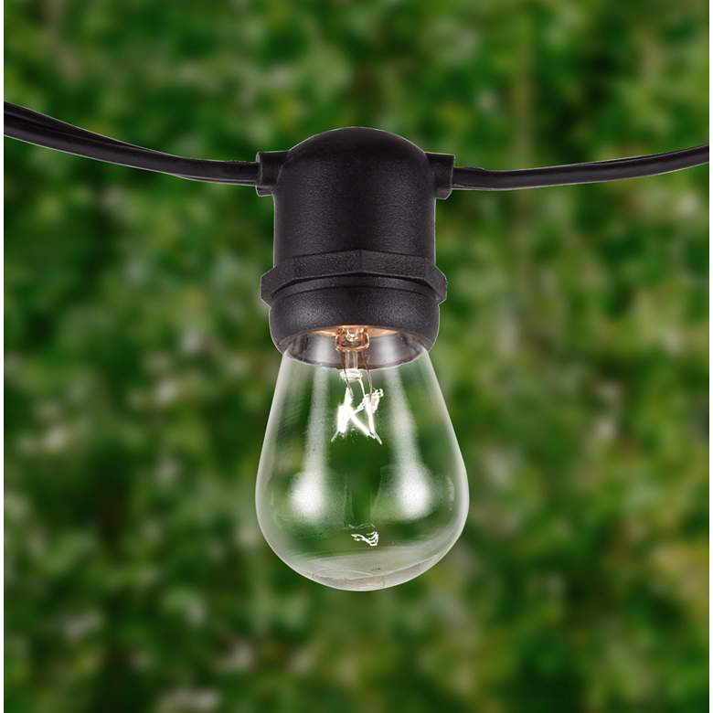 Aspen 24 Clear-Bulb 48' Indoor-Outdoor String Light