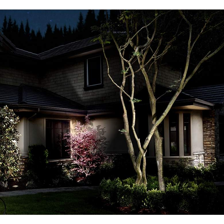 Hinkley 25 Degree Espresso 3 Watt LED Landscape