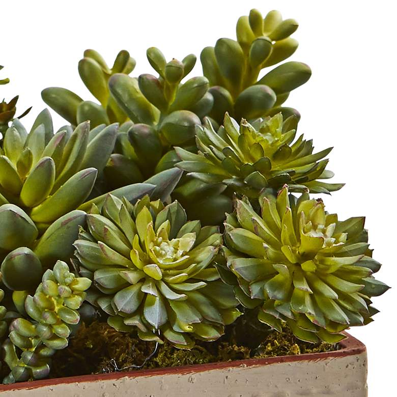 "Green Succulents 8"" Wide Faux Plants in Decorative Planter more views"